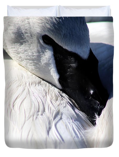 Duvet Cover featuring the photograph Trumpeter Swan At Rest by Sue Harper