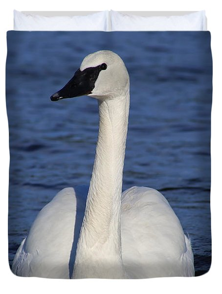 Majestic Trumpeter Swan  Duvet Cover