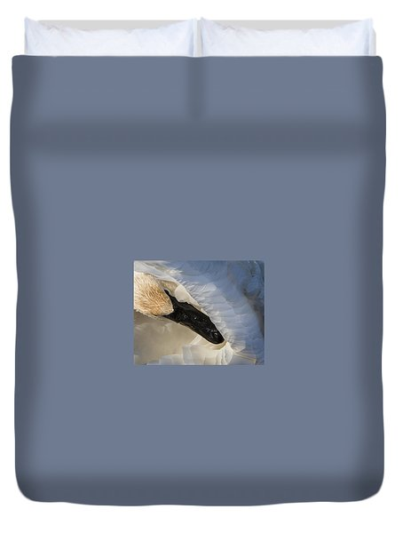 Trumpeter Swan - Safe Place Duvet Cover by Patti Deters