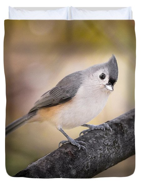 Tufted Titmouse Duvet Cover by Bill Wakeley