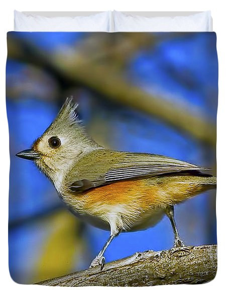 Tufted Titmouse Duvet Cover by Gary Holmes