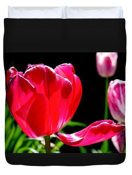 Tulip Extended Duvet Cover by Rona Black