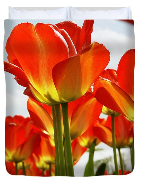 Tulip Field 1 Duvet Cover by Rudi Prott