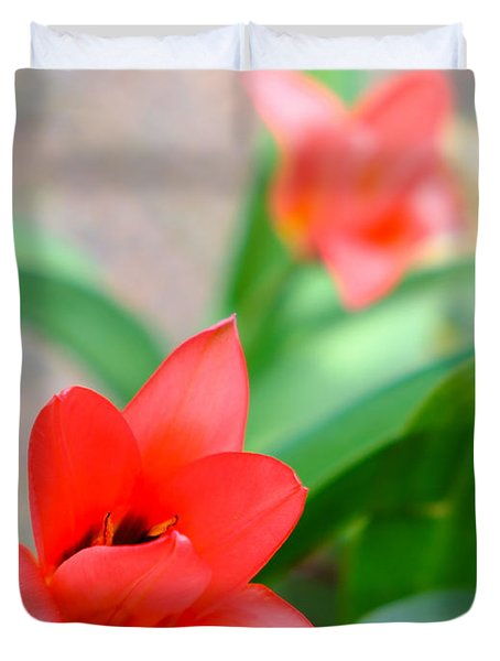 Tulip Of Dream Duvet Cover