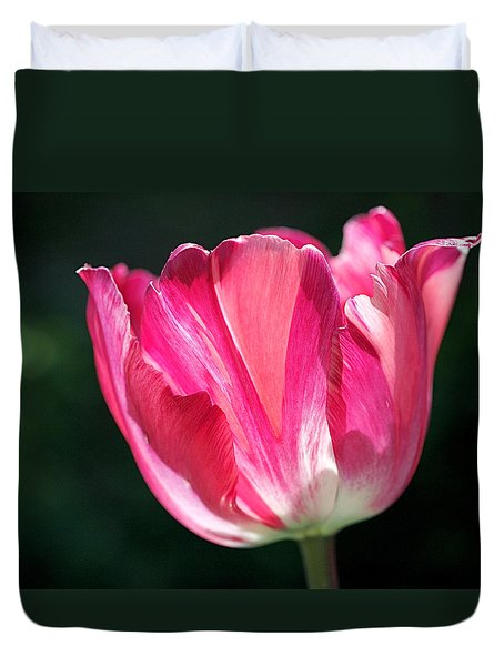 Tulip Painted In Shades Of Pink Duvet Cover