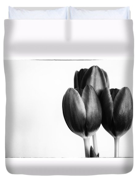 Tulip Trio Duvet Cover by Shelly Gunderson
