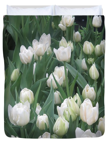 Duvet Cover featuring the photograph Tulip White Show Flower Butterfly Garden by Navin Joshi
