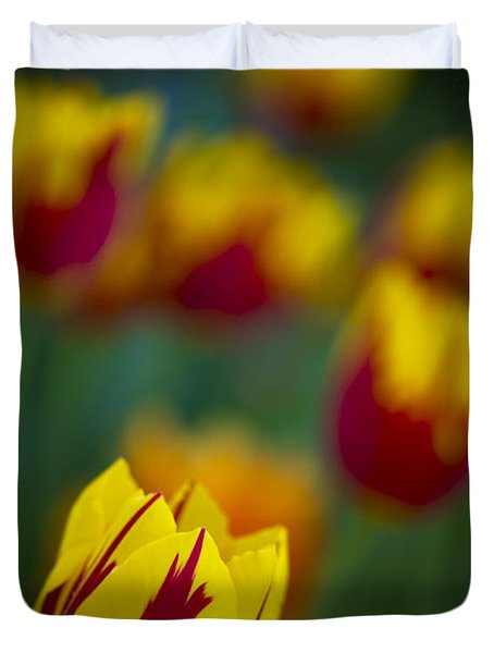 Tulips Duvet Cover by Chevy Fleet