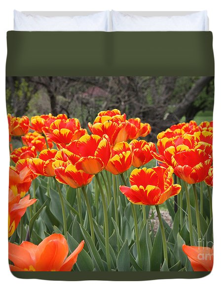 Tulips From Brooklyn Duvet Cover by John Telfer