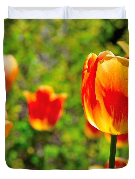 Duvet Cover featuring the photograph Tulips by Joe  Ng