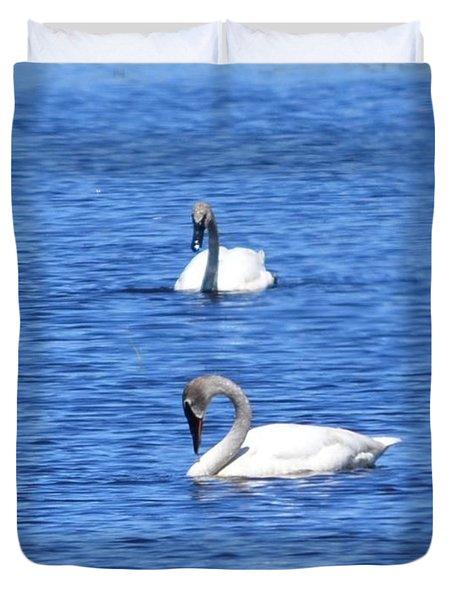 Tumpeter Swans Duvet Cover