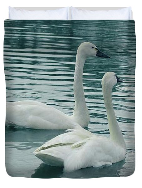 Tundra Swans Duvet Cover by Kathleen Struckle
