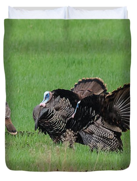 Turkey Mating Ritual Duvet Cover