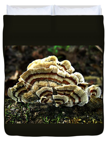 Turkey Tail Fungi Duvet Cover