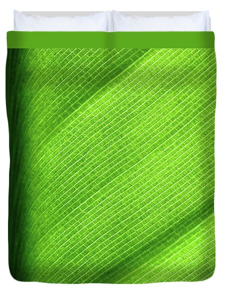 Turning A New Leaf Duvet Cover by Rona Black