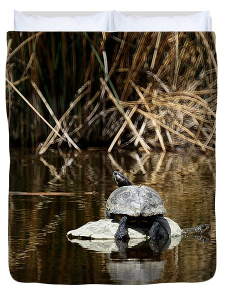 Turtle On Turtle Duvet Cover by Ernie Echols