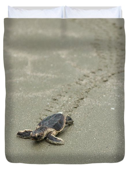 Turtle Tracks Duvet Cover