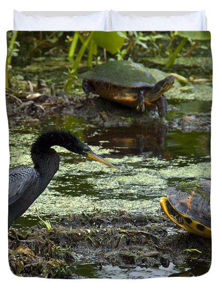 Turtles And Anhinga Duvet Cover