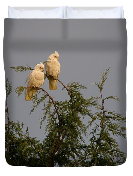 Twin Cockatoos Duvet Cover