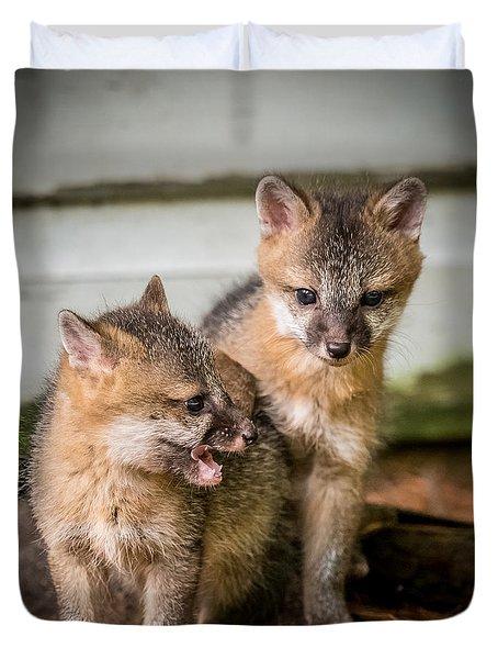 Twin Fox Kits Duvet Cover by Paul Freidlund