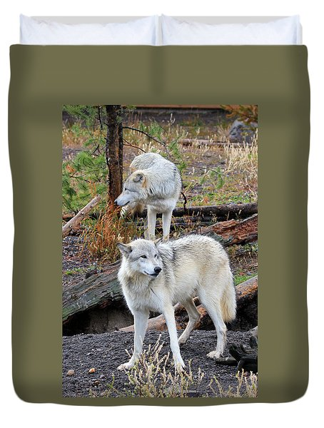 Twin Wolves Duvet Cover by Athena Mckinzie