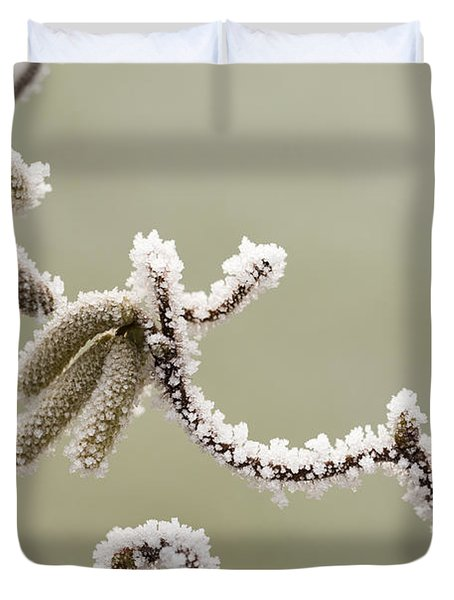 Twisted Frost Duvet Cover by Anne Gilbert