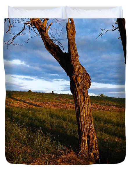 Twisted Tree Duvet Cover by Nick Kirby