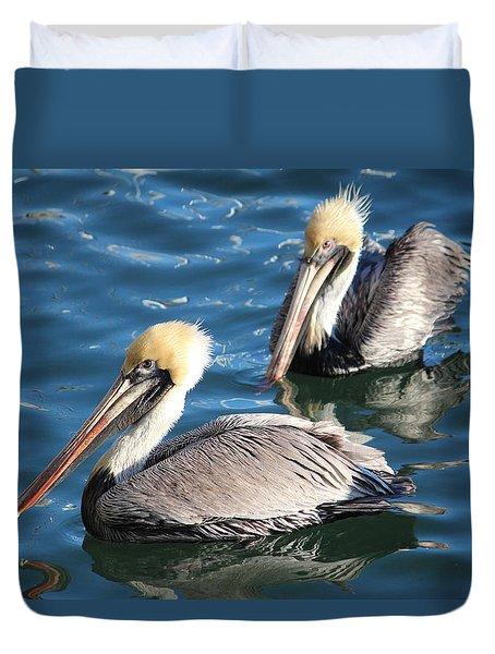 Two Beautiful Pelicans Duvet Cover by Cynthia Guinn