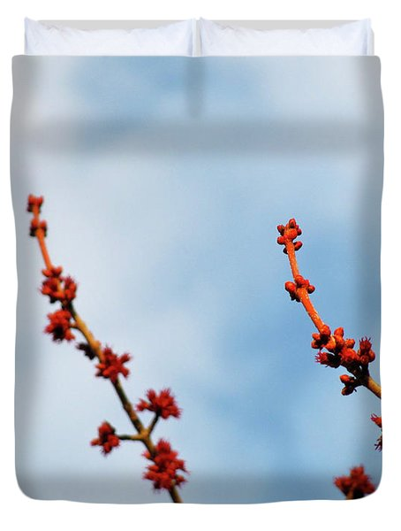 Two Budding Branches Duvet Cover by CML Brown