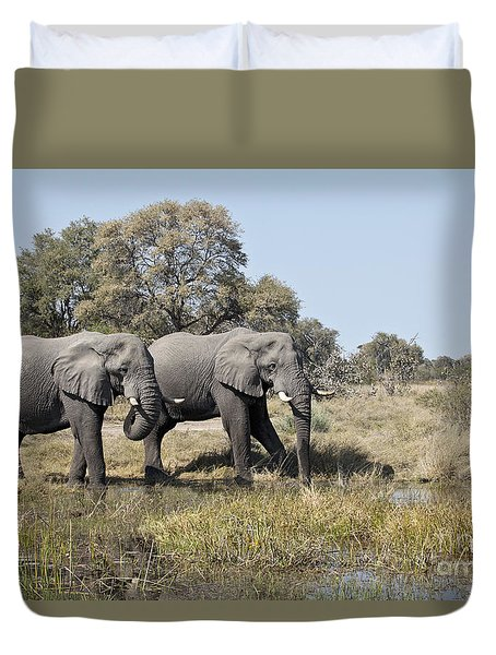 Two Bull African Elephants - Okavango Delta Duvet Cover