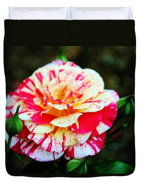 Two Colored Rose Duvet Cover by Cynthia Guinn