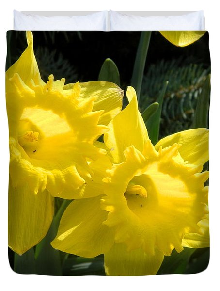 Duvet Cover featuring the photograph Two Daffodils by Kathy Barney
