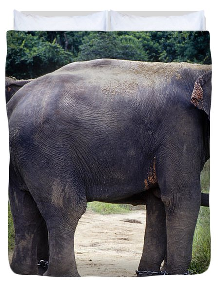 Two Elephants Duvet Cover