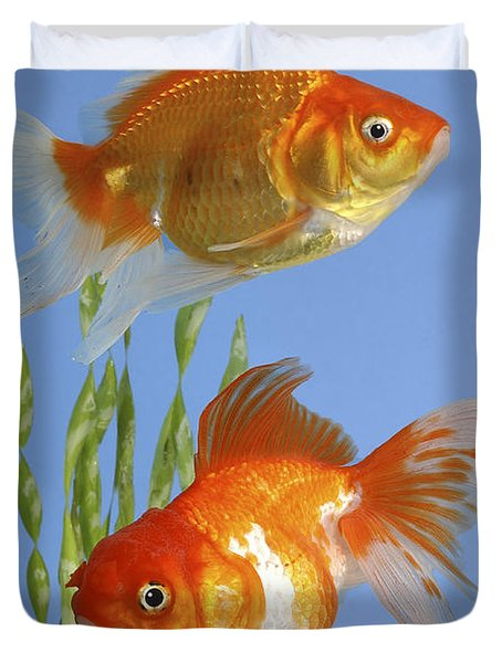 Two Fish Fs101 Duvet Cover by Greg Cuddiford