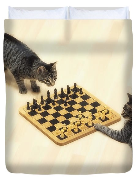 Two Grey Tabby Cats Playing Duvet Cover by Thomas Kitchin & Victoria Hurst