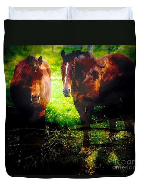 Two Horses Duvet Cover by Annie Zeno