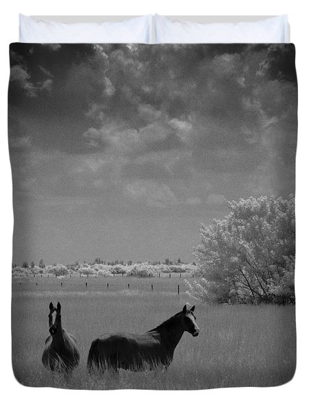 Two Horses Duvet Cover by Bradley R Youngberg