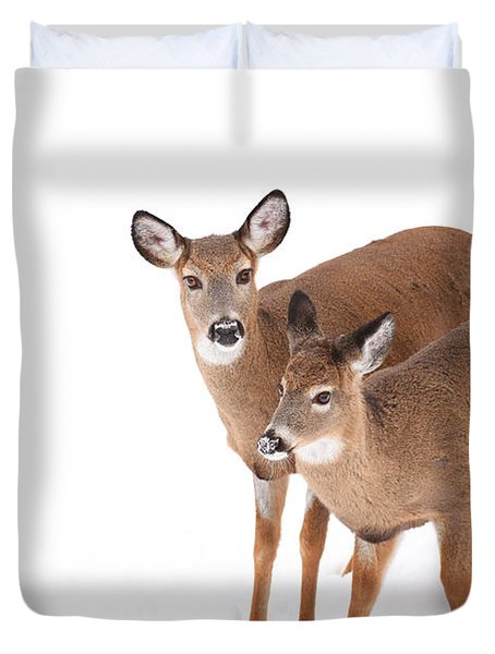 Two In The Snow Duvet Cover by Karol Livote