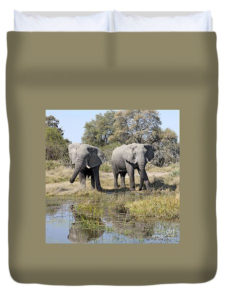 Duvet Cover featuring the photograph Two Male Elephants Okavango Delta by Liz Leyden