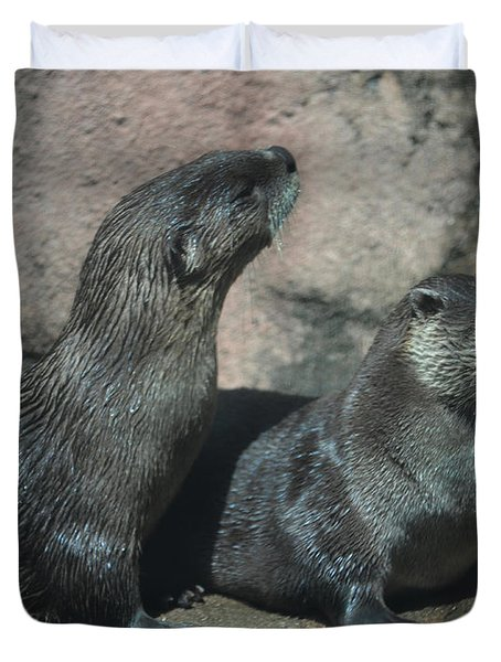 Two Otters Duvet Cover