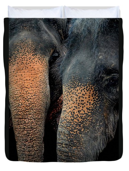 Duvet Cover featuring the photograph Two Pals by Michelle Meenawong