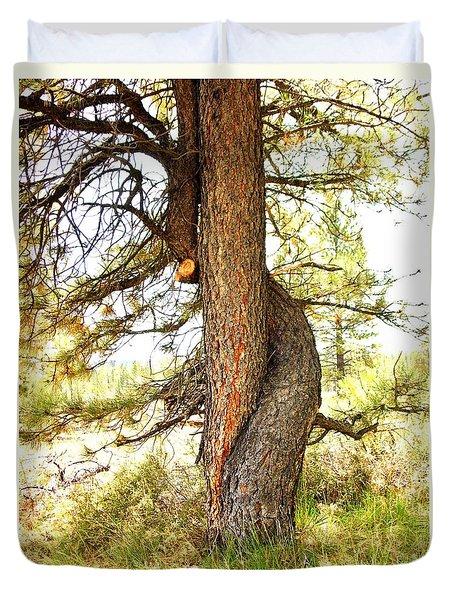 Two Pines Intertwined  Duvet Cover by Deborah Moen