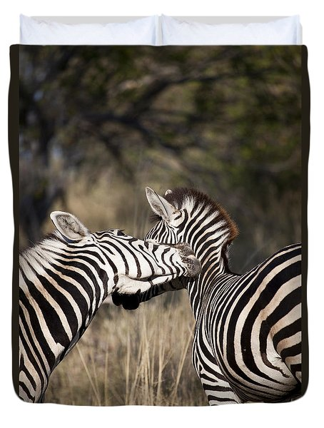 Duvet Cover featuring the photograph Two Plains Zebra Botswana by Liz Leyden