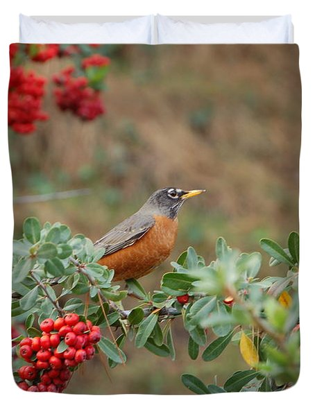 Two Robins Eating Berries Duvet Cover
