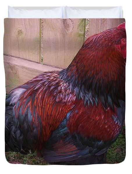 Two Roosters Duvet Cover by Eric  Schiabor