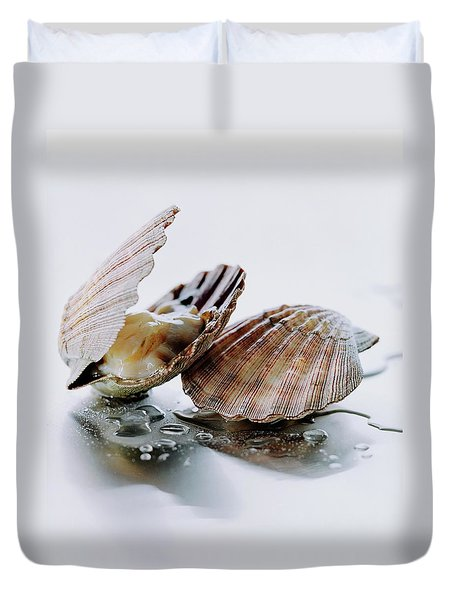 Two Scallops Duvet Cover by Romulo Yanes