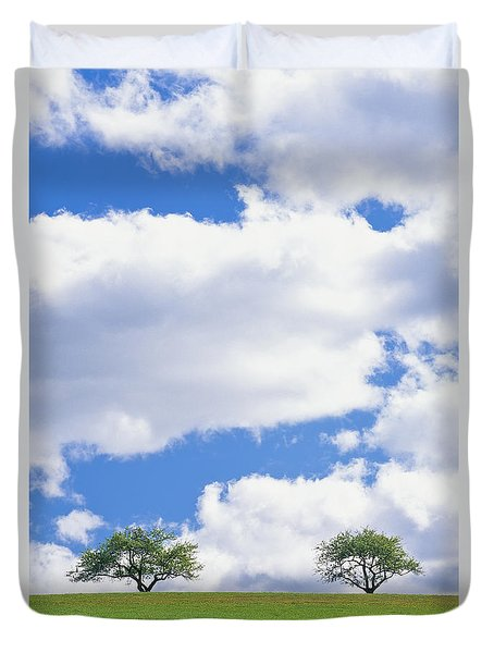 Two Trees Duvet Cover by Alan L Graham