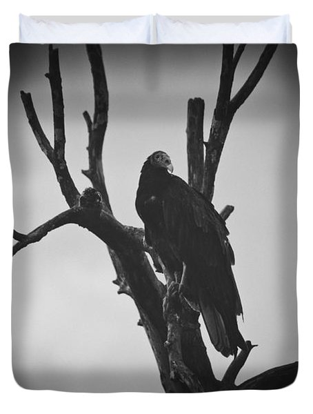 Two Vultures Duvet Cover by Bradley R Youngberg