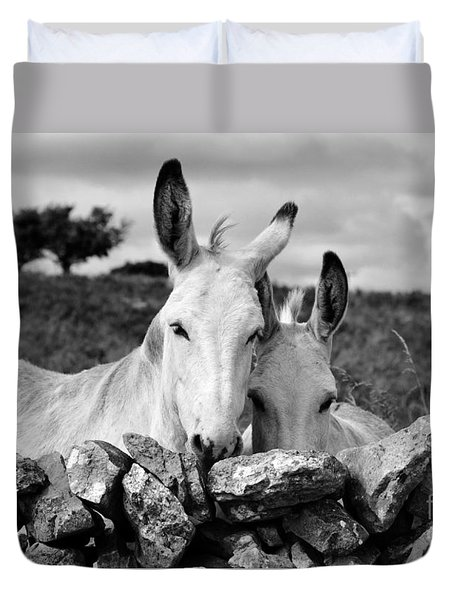 Two White Irish Donkeys Duvet Cover