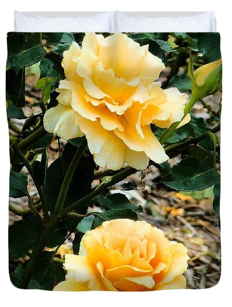 Duvet Cover featuring the photograph Two Yellow Roses by Janette Boyd